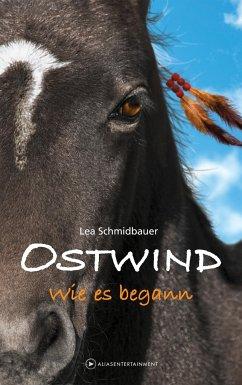 Wie es begann / Ostwind Bd.7 - Schmidbauer, Lea