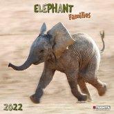 Elephant Families 2022