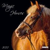 Magic Horses 2022