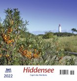 Hiddensee 2022 Postkartenkalender