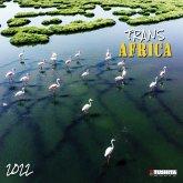 Africa 2022