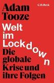 Welt im Lockdown