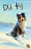 Dusty und das Winterwunder / Dusty Bd.4