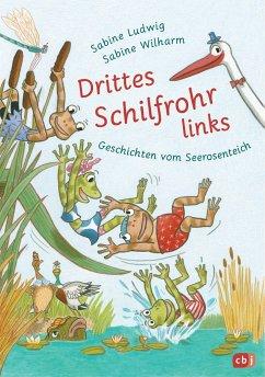 Drittes Schilfrohr links - Geschichten vom Seerosenteich - Ludwig, Sabine