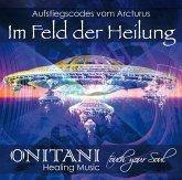 IM FELD DER HEILUNG, Audio-CD