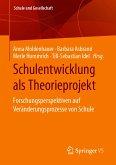 Schulentwicklung als Theorieprojekt (eBook, PDF)