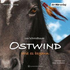 Wie es begann / Ostwind Bd.7 (6 Audio-CDs) - Schmidbauer, Lea