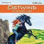 Ein rätselhafter Unfall / Ostwind Abenteuerreihe Bd.1 (3 Audio-CDs)