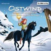 Ostwind. Spukalarm im Pferdestall & Weihnachten mit Hindernissen, 1 Audio-CD
