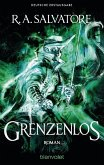 Grenzenlos / Die Generationen-Trilogie Bd.2
