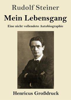 Mein Lebensgang (Großdruck) - Steiner, Rudolf