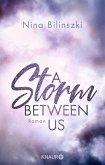 A Storm Between Us / Between Us Bd.3