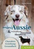 Mini Aussie und Miniature American Shepherd