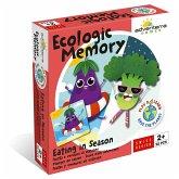 Ecologic Memory: Essen nach Jahreszeit (Kinderspiel)
