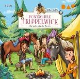 Da lachen ja die Ponys / Ponyschule Trippelwick Bd.5 (2 Audio-CDs)
