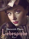 Liebesprobe (eBook, ePUB)