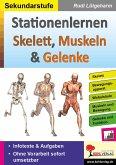 Stationenlernen Skelette, Muskeln & Gelenke (eBook, PDF)