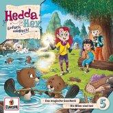 Hedda Hex - Das magische Geschenk/Die Biber sind los!, 1 Audio-CD