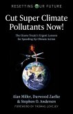 Resetting Our Future: Cut Super Climate Pollutan - The Ozone Treatya s Urgent Lessons for Speeding Up Climate Action
