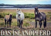 Das Islandpferd (Wandkalender 2022 DIN A3 quer)