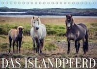 Das Islandpferd (Tischkalender 2022 DIN A5 quer)
