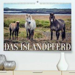 Das Islandpferd (Premium, hochwertiger DIN A2 Wandkalender 2022, Kunstdruck in Hochglanz)