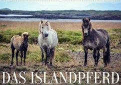 Das Islandpferd (Wandkalender 2022 DIN A2 quer)