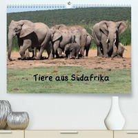 Tiere aus Südafrika (Premium, hochwertiger DIN A2 Wandkalender 2022, Kunstdruck in Hochglanz)