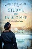 Stürme über Falkensee / Gut Falkensee Bd.3