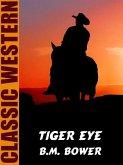 Tiger Eye (eBook, ePUB)