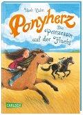 Die Prinzessin auf der Flucht / Ponyherz Bd.18