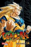 Dragon Ball Massiv 14