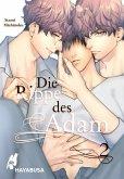 Die Rippe des Adam 2