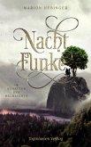Nachtfunke 2 (eBook, ePUB)