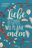 Liebe beginnt, wo Pläne enden (eBook, ePUB)