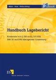 Handbuch Lagebericht (eBook, PDF)