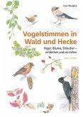 Vogelstimmen in Wald und Hecke