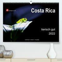Costa Rica tierisch gut 2022 (Premium, hochwertiger DIN A2 Wandkalender 2022, Kunstdruck in Hochglanz)