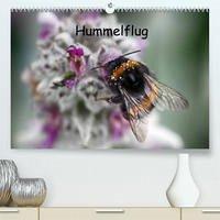 Hummelflug (Premium, hochwertiger DIN A2 Wandkalender 2022, Kunstdruck in Hochglanz)