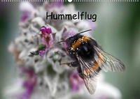 Hummelflug (Wandkalender 2022 DIN A2 quer)