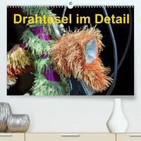 Drahtesel im Detail (Premium, hochwertiger DIN A2 Wandkalender 2022, Kunstdruck in Hochglanz)