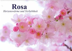 Rosa. Herzenswärme und Verliebtheit (Wandkalender 2022 DIN A2 quer)