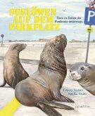 Seelöwen auf dem Parkplatz