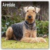 Airedale Terriers 2022 - 18-Monatskalender mit freier DogDays-App