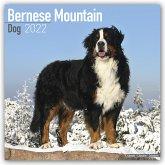 Bernese Mountain Dogs - Berner Sennenhunde 2022 - 18-Monatskalender mit freier DogDays-App
