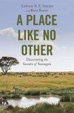 A Place like No Other (eBook, ePUB)