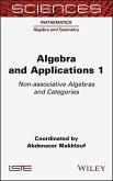 Algebra and Applications 1 (eBook, ePUB)