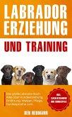 Labrador Erziehung und Training: Das große Labrador Buch