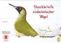 Steckbriefe einheimischer Vögel (Wandkalender 2022 DIN A2 quer)
