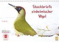 Steckbriefe einheimischer Vögel (Wandkalender 2022 DIN A4 quer)